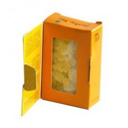 Mastic pur de Chios, boîte 20g - grande taille
